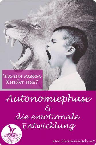 Autonomiephase warum rasten Kinder aus aggressive Kinder