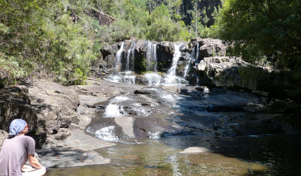 Wasserfall Tasmania