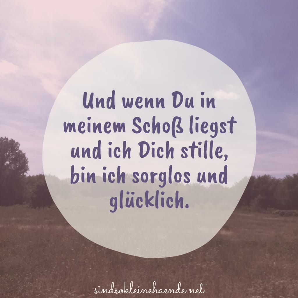 Bild_Lini_Stillbeitrag_fb_bild